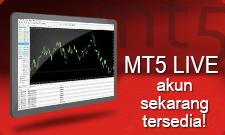MT5 real accounts